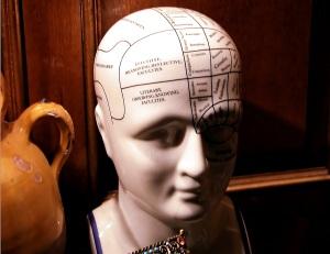 brain morguefile